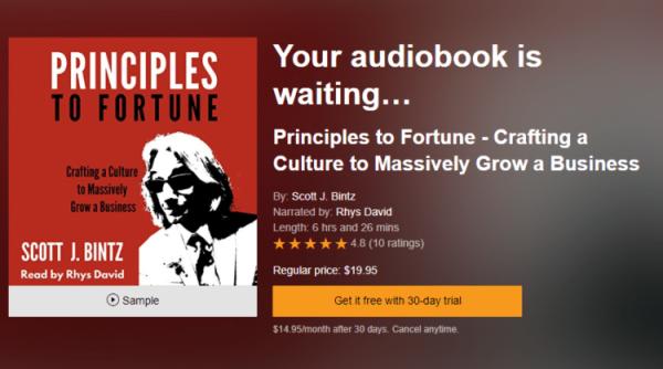 Principles to Fortune Audio Book